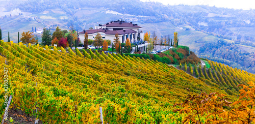 Autumn landscape with gorgeous vineyards in Piedmont. Northen Italy