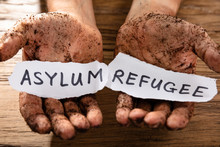 Man With Pieces Of Paper Showing Refugee And Asylum Word