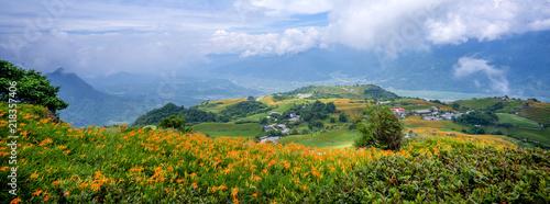 Obraz na plátně The Orange daylily(Tawny daylily) flower farm at Sixty Rock Mountain(Liushidan