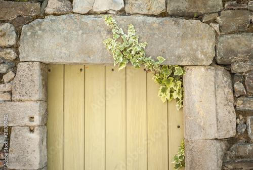 Porte envahie par un lierre dans le centre du village de Naves Canvas Print