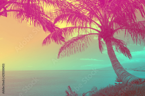 Poster Oceanië Beautiful tropical ocean with palm trees at sunset. Travel background with retro vintage duo-tone 90's style.