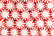 Colorful Red And White Starlig...