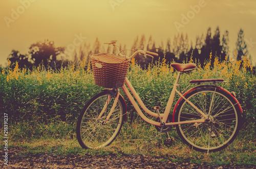 Deurstickers Fiets Bicycle in the garden Vintage tone