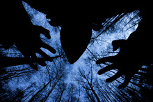 Ghostly Silhouette In Spooky Dark Forest. Halloween Concept