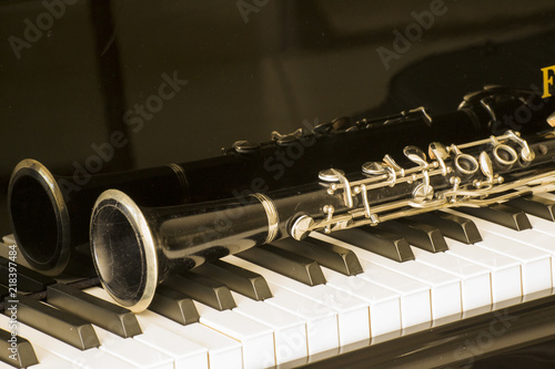 Slika na platnu clarinet over grand piano keys in close