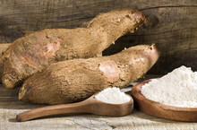 Raw Cassava Starch - Manihot E...
