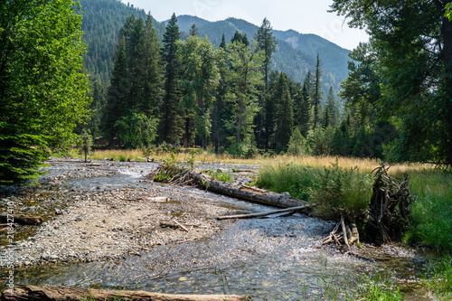 Seasonal stream in Wallowa Lake State Park, Oregon, USA #218427410