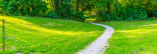 In de dag Lime groen curved park road in a countryside park landscape