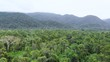 amazonia view from the top