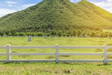 Green Hills And Fence Lush Grass, Blue Sky With White Clouds