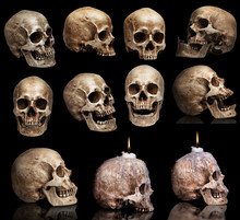 Set Of Human Skulls In Differe...