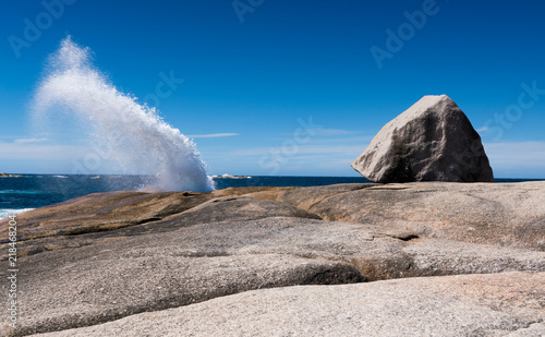 Obraz na plátně Bicheno Blowhole, Bay of fires, Tasmania