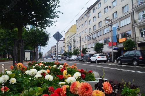 Fotografia, Obraz Centrum Gdyni latem, Pomorze/Gdynia downtown in summer, Pomerania, Poland