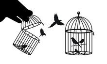 Birds Cage, Jailbirds | Prison Vector Illustration