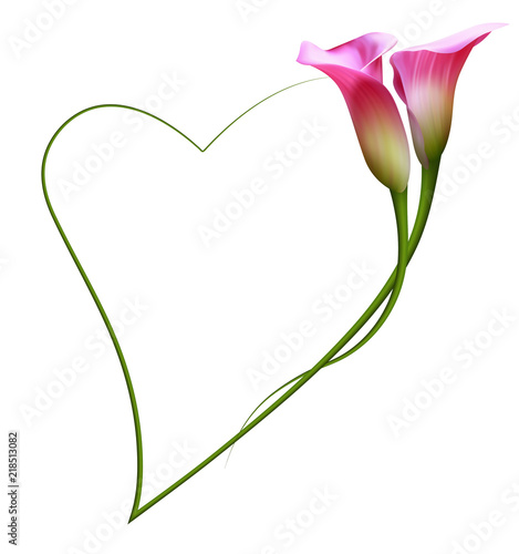Realistic Pink Calla Lily Frame Heart The Symbol Of Enchanting