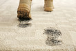 canvas print picture - Person in dirty shoes leaving muddy footprints on carpet