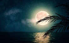Sea With Stars And Full Moon 3d Illustration