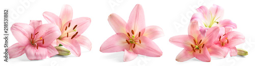 Fotobehang Bloemenwinkel Set with beautiful lilies on white background