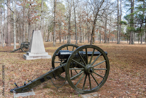 Union Artillery on Chickamauga Battlefield Wallpaper Mural