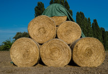Round Bales Of Straw Lying On A Plowed Field In The Background Of A Beautiful Blue Sky.