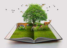Wildlife Conservation Tiger Deer Bird Environment Book Of Nature Isolated On White Open Book In Paper Recycling 3d Rendering Book Of Nature With Grass And Tree Growth On It Over White Background
