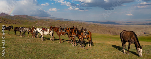Keuken foto achterwand Noordzee Kirgistan Kochkor Naryn
