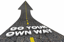 Go Your Own Way Be Independent Road Words 3d Illustration