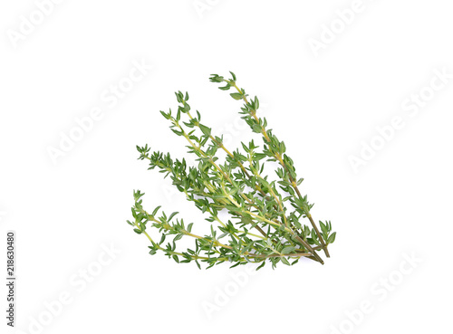 Fotomural  Thyme sprigs isolated on a white background