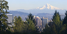 Mt. Hood Panorama And Downtown...