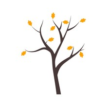 Autumn Tree With Yellow And Or...