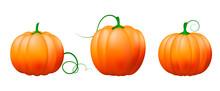 Pumpkin Icon Set,Vector Vegetables.