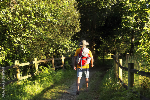 Way of st james pilgrim , english way departing from Ferrol  to Compostela in Pe Fototapet