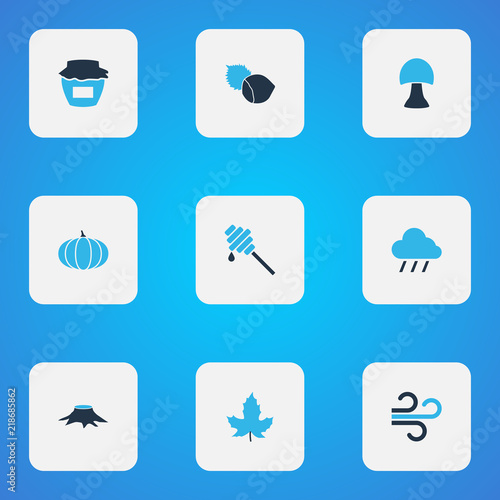 Season icons colored set with wind, rain, maple and other cloud