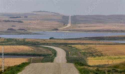 Summer Prairie Scene