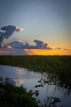 Sunset Over The Everglades