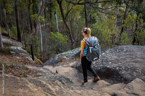 Fotografie, Obraz Bushwalking Blue Mountains