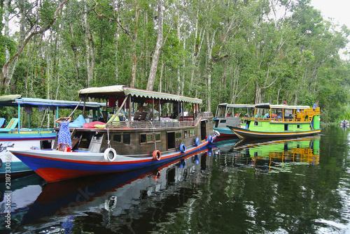 Fotografía  Klotok, river boats on Sekonyer river, Indonesia