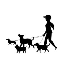 Female Dog Walker Sitter Walki...