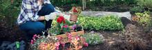 Unrecognizable Female Gardener...
