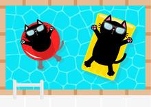 Swimming Pool. Black Cat Float...