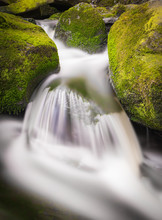 Mountain Stream Flowing Over Moss Covered Boulders
