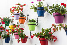 Coulorful Flowerpots Of Andalusia