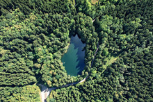 Aerial View Of Few People Swimming In Crystal Clear Lake In The Deep Forest In Summer