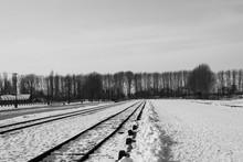 Ferrovia Di Auschwitz