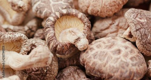 Fotografie, Obraz  Stack of Dry mushroom