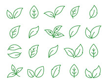 Set Of Linear Green Leaf Icons On White