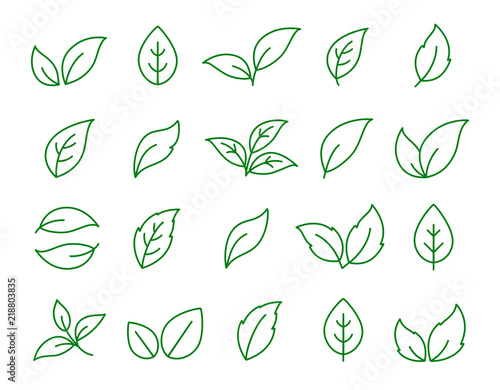 Obraz set of linear green leaf icons on white - fototapety do salonu