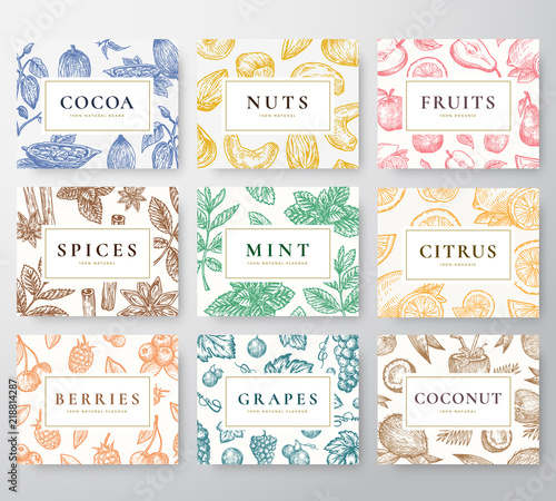 Hand Drawn Nuts, Spices and Berries with Fruits and Coconut Cards Set. Abstract Vector Sketch Backgrounds Collection with Classy Retro Typography. Patterns Collection. - 218814287
