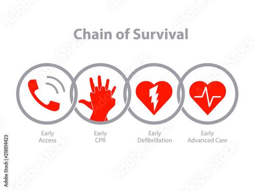 Obraz na plátně The survival chain.