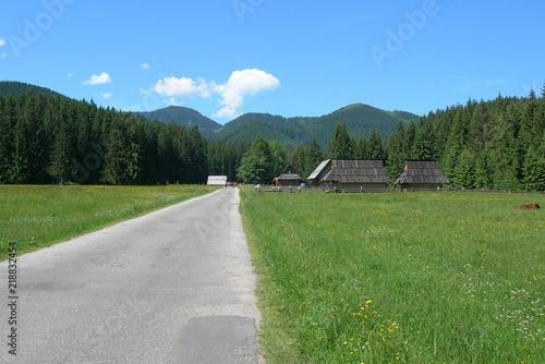 Fototapeta Tatry - Dolina Chochołowska, część asfaltowa obraz